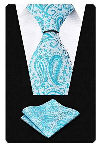 Alizeal Paisley Men's Tie and Pocket Square Sets (59