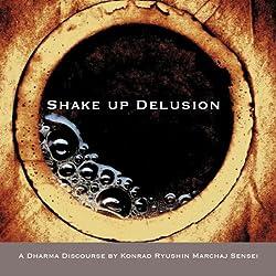 Shake Up Delusion