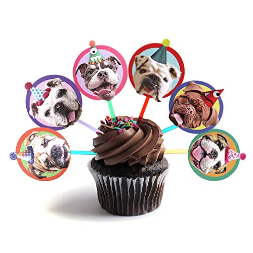 Birthday Bulldog (English Bulldog Cupcake Toppers - Set of 6 different birthday dogs party decorations)