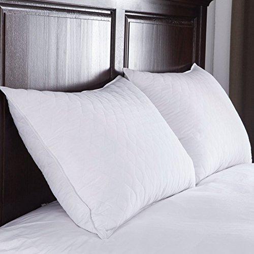 Pillows for Sleeping 2 Pack, Serta Queen Bed Pillows Set, Home Soft Best Comfort sleep pillow set, Bonus of a Prestee Elegant Double-Stitched Pillowcase