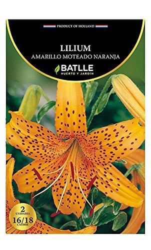 Bulbos - Lilium amarillo moteado naranja - Batlle Semillas Batlle 076606BOLS