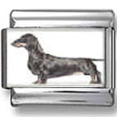 Daschund Dog Photo Italian Charm by CharmsLand