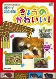 NHK / ダーウィンの動物大図鑑 はろ!あにまる きょうのかわいい! キュートBOX DVD