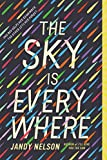 download ebook [the sky is everywhere] (by: jandy nelson) [published: march, 2011] pdf epub