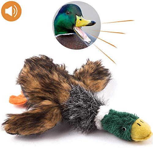 (wangstar Pet Mallard Duck Dog Toy, Squeaky Dog Toy, Plush Puppy Dog Chew Toy for Small Medium Dogs, 9 Inch Wild Duck)
