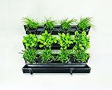 Cheap Watex WX065 Picture Garden Starter Kit