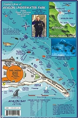 Avalon Underwater Park Santa Catalina Map & Kelp Forest Creatures ...