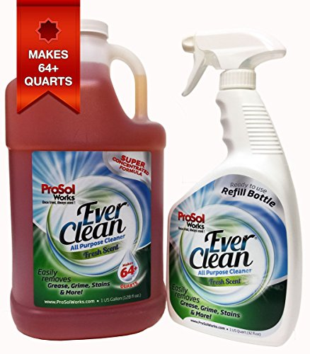 ProSol EverClean All Purpose Cleaner 1 Gallon Concentrate - Makes 64+ Quarts - Includes 1 FREE 32oz. Empty Spray Bottle - Multi Surface Cleaner For Kitchen, Bathroom and Entire ()