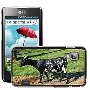 Hot Style Cell Phone PC Hard Case Cover // M00113200 Goat Livestock Farm Zoology Species // LG Optimus L5 II Dual E455 / E460