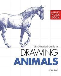Artist's Workbook: Animals