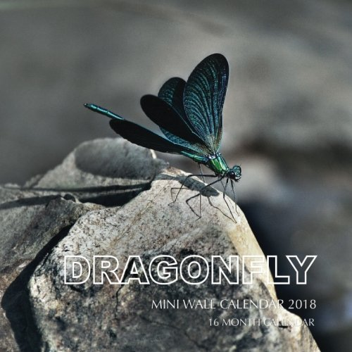 Dragonfly Mini Wall Calendar 2018: 16 Month Calendar