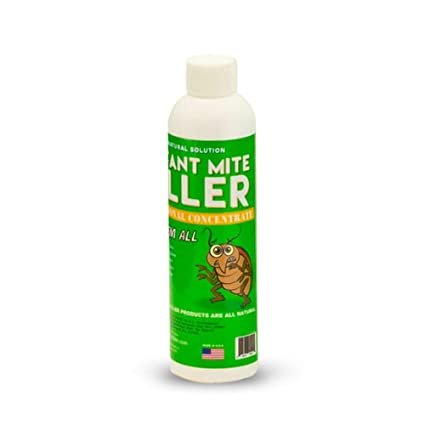 Amazon.com: Instant antiácaros Killer Super Concentrado 8 oz ...