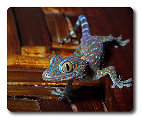 "Price comparison product image Blue Oranged Spotted Lizard Gecko Reptile Cusized Mouse Pad Rectangle Mouse Pad Gaming Mouse mat in 8.7"" x 7.08"" inch"