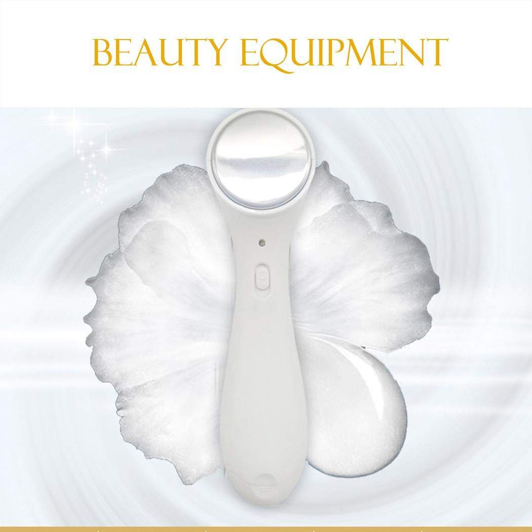 Vividy Electric Ion Facial Beauty Device Skin Care Face Cleaner Massage Facial Cleansing Devices