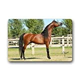 2018 Mats Custom Arabian Horse Floral Print Washable Doormat Rugs Top Fabric & Non-Slip Rubber Backing Entryways Carpet 30''(L) x18(W) Indoor/Outdoors