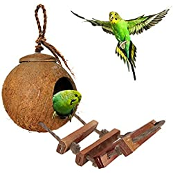 SunGrow Bird House with Ladder: 100% Natural Coconut Husk: Beautiful Nesting House or Bird Feeder: Sustainable Materials: Natural Textures Encourage Foot and Beak Exercise
