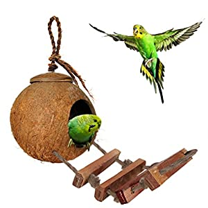 SunGrow Bird House with Ladder, Nesting Home and Bird Feeder, Mini Condo for Avians, Coco Texture Encourage Foot and Beak Exercise, 100% Raw Coconut Husk - Durable Habitat with Hanging Loop 1