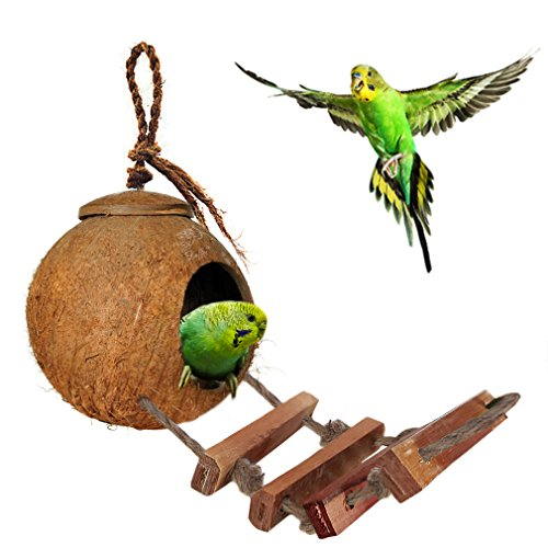 (SunGrow Bird House with Ladder - Beautiful Nesting Home and Bird Feeder - Natural Textures Encourage Foot and Beak Exercise - 100% Natural Coconut Husk - Sustainable Materials - Durable)