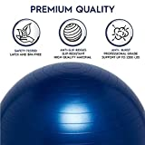 Balance Ball - No-Roll Weighted Seat is a