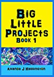Big Little Projects Book 1