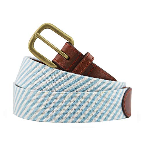 Smathers & Branson Men's Needlepoint Belt 40 Blue Seersucker/Multi ()