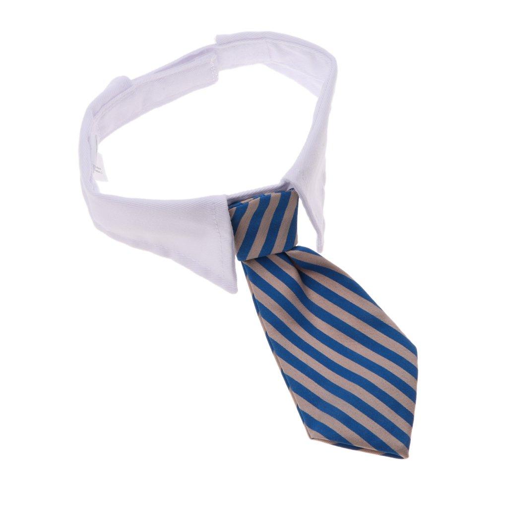 NON Sharplace Cuello Pajarita Raya de Animal Dom/éstico Mascota Color Brillante Ecol/ógico Azul Blanco
