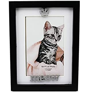4x6 black cat picture frame