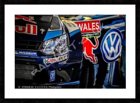 Polo WRC (SKP) 40,64 cm x 30,48 cm: Amazon.es: Hogar