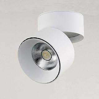 BIN PANNOCCHIA Faretto da Parete LED Luce del Soffitto può Essere Regolato,White/Natural,10W