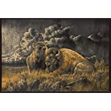 "Segma Distant Thunder Bison Area Rug, Natural, 5'3"" x 7'6"""