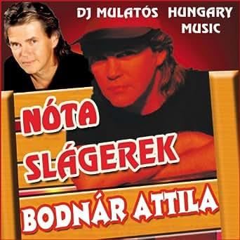Elment a Lidi néni a vásárba by Bodnár Attila on Amazon ...
