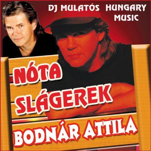 Nóta slágerek - DJ Mulatós Hungary (Hungary Note)