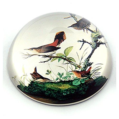 Winter Aviary - Birds Winter Wrens in Tree Glass Paperweight by J.J Audubon 3W PAUD1 Parastone