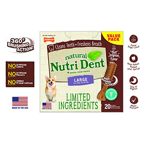 Nylabone Nutri Dent Filet Mignon 20Count Box