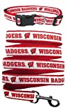 Pets First Wisconsin Badgers Nylon Collar and Matching Nylon Leash for Pets (NCAA Official Size Medium