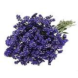 Farm Fresh Statice Natural Purple - 150 stems