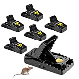 Lurowo 6 Pieces Mouse Traps Killer Rodent Catcher Bait Snap Spring Pest Control