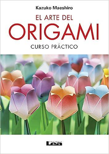 El arte del origami: Curso práctico (Spanish Edition): Kazuko Maeshiro: 9789876345965: Amazon.com: Books