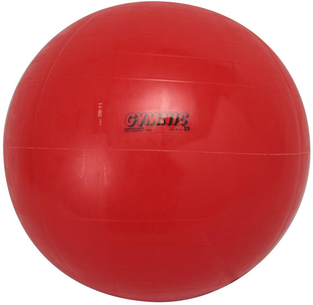 【送料無料(一部地域を除く)】 ダンノ(DANNO) レッド(55cm) ダンノ(DANNO) バランスボール B000ARSI1G ギムニクカラーボール B000ARSI1G レッド(55cm), ヨシナガチョウ:5aa18529 --- arianechie.dominiotemporario.com