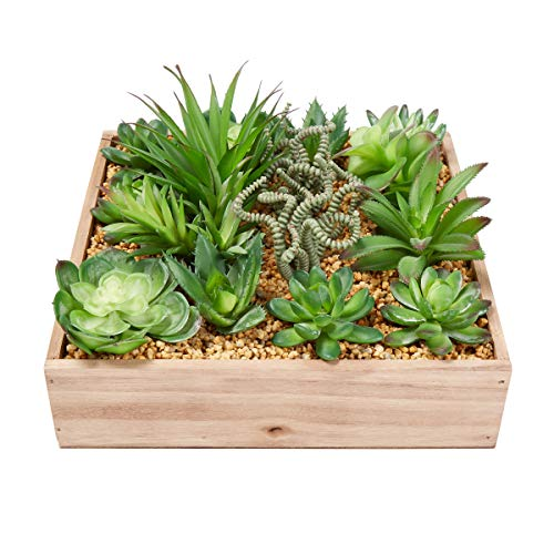 Assorted Wooden Boxes - Home Pure Garden Faux Succulents - Assorted Lifelike Plastic Greenery Arrangement with 10 Inch Decorative Wooden Box for Indoor Office (4 Piece)
