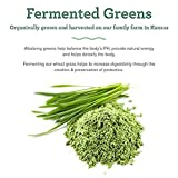 Amazing Grass Belly Elixir, Greens and Adaptogens