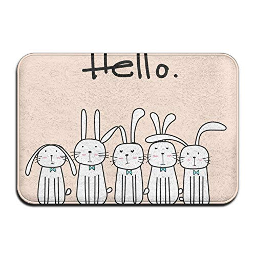 Wyuhmat1 Indoor/Outdoor Coral Fleece Clean Rubber Non Slip Backing Entry Way Doormat for Patio, Front Door, All Weather Exterior Doors, 40x60cm - Bunnies with Say Hello