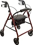 ProBasics Steel Rollator with 6-inch Wheels, Padded Seat and Backrest, Height Adjustable Handles, Folds for Storage & Transport, 300 Pound Weight Capacity, Burgundy