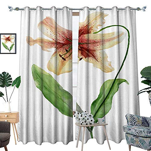 Blackout Curtains for Bedroom Beautiful Tiger Lily Flower on a stem with Green Leaves Watercolor Painting Floral Illustration Hand Painted Isolated on White Background W96 x L108 Drapes (Drapes Lily Tiger)
