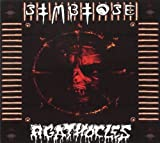 Split by Agathocles