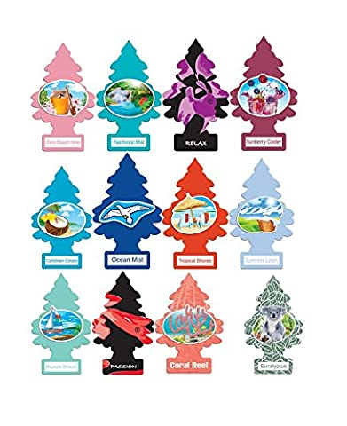 Little Trees Home and Car Air Fresheners 12 Pack Vacation Pack Ultra Rare Scents - Little Trees Car