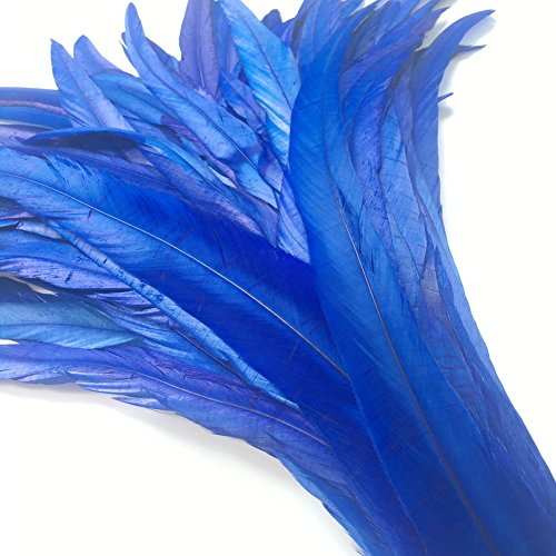 Tail Feather Costume (Shekyeon 12-14inch Rooster Tail Feather Use for Hats Costume Decoration Pack of 50(Royal Blue))