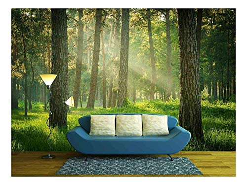 - wall26 - Forest - Removable Wall Mural | Self-adhesive Large Wallpaper - 66x96 inches