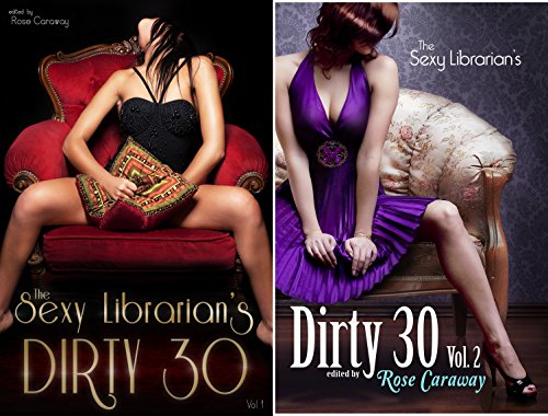 The Sexy Librarian's Dirty 30 ()