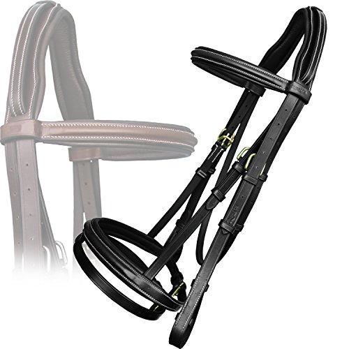 Best Horse Bridles